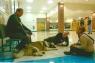 Sandy Hook Wellmore Staff Support